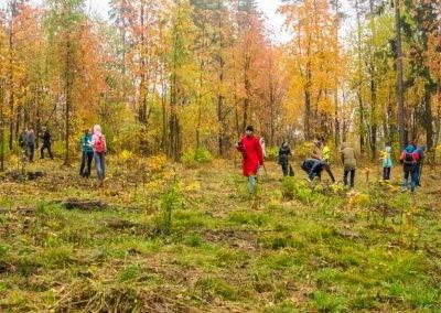 Ижевск-PosadiLes-осень-2016-21-e1476785019544