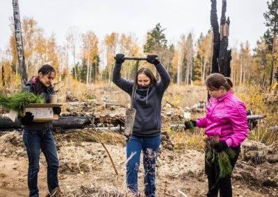 Иркутская-область-PosadiLes-осень-2017-98