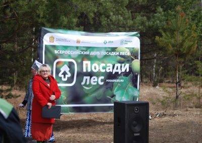 Пенза, Золотаревка, Posadiles, весна-2018