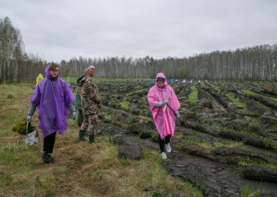 Новосибирская область, весна-2018, Posadiles.ru -209