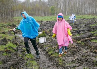 Новосибирская область, весна-2018, Posadiles.ru -216