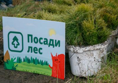 Новосибирская область, весна-2018, Posadiles.ru -28