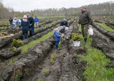 Новосибирская область, весна-2018, Posadiles.ru -69