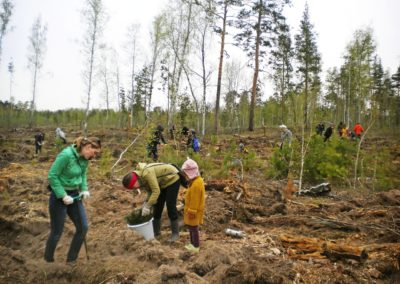 Челябинская область, весна-2018, Posadiles.ru -11
