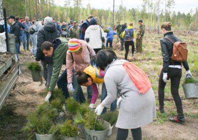 Челябинская область, весна-2018, Posadiles.ru -12
