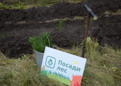 Челябинская область , осень - 2018 (136)