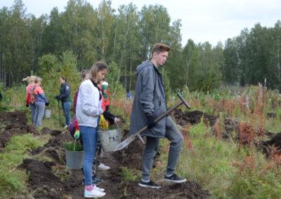 Челябинская область , осень - 2018 (2)